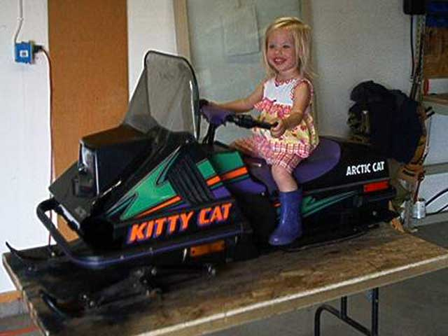 95 Kitty Cat snowmobile